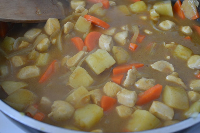 Japanese curry13