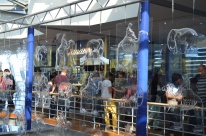 Lindt Chocolate Museum